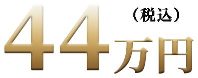 22万円(税込)
